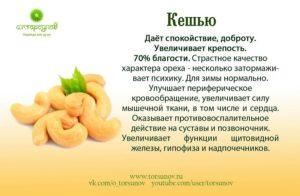 Орехи польза и вред для женщин