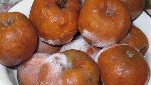 Яблоки замороженные польза и вред