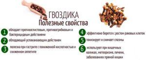 Польза и вред гвоздики для организма женщины