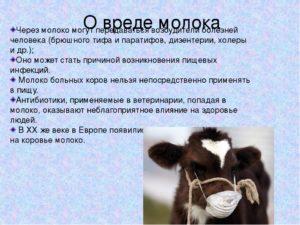 Коровье молоко для детей польза и вред