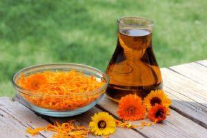Настойка календулы польза и вред для здоровья