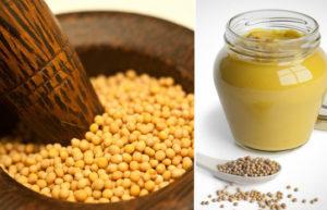 Французская горчица в зернах вред и польза