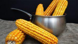 Вареная кукуруза детям польза и вред