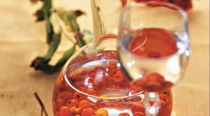 Настойка из красной рябины на водке польза и вред