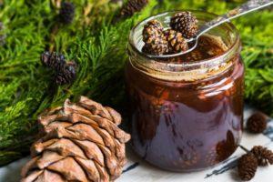 Настойка из кедрового ореха польза и вред