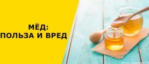 Мед польза и вред для здоровья мужчин