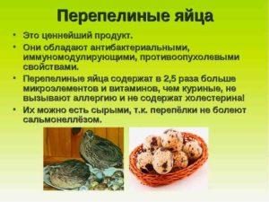 Перепелиные яйца детям польза и вред как принимать