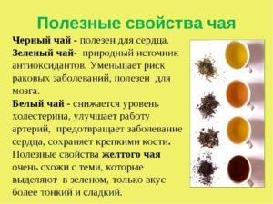 Черный чай польза и вред для женщин