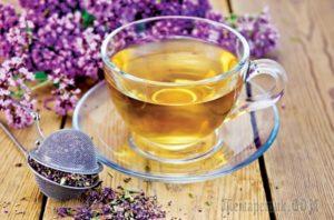 Чай из душицы вред и польза и вред