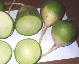 Сок из зеленой редьки польза и вред