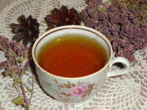 Чай из душицы польза и вред для женщин