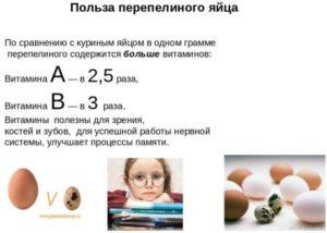 Польза яйца польза и вред как принимать детям