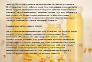Пчелиное маточное молочко польза и вред как принимать детям