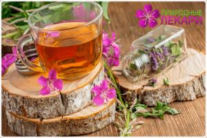 Польза и вред иван чая для женщин