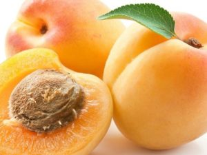 Чай из листьев абрикоса польза и вред