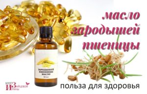 Масло зародышей пшеницы польза и вред как принимать