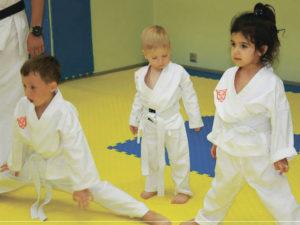 Дзюдо для детей польза и вред