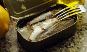 Рыба консервированная вред и польза и вред