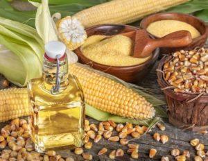 Масло из зародышей кукурузы польза и вред
