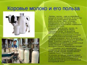 Молоко коровье польза и вред для ребенка