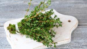 Трава чабрец польза и вред для здоровья
