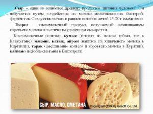 Сыр польза и вред для организма человека