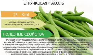 Спаржевая фасоль польза и вред для организма человека