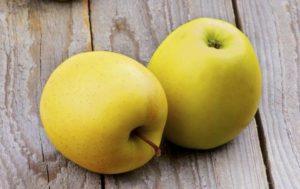 Яблоко польза и вред для мужчин