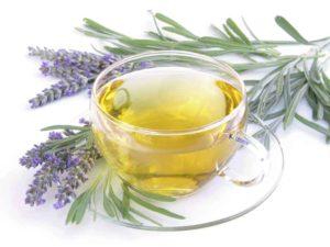 Чай из шалфея польза и вред для женщин