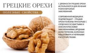 Грецкие орехи польза и вред для организма женщины