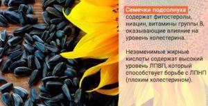 Семена подсолнечника польза и вред норма в день
