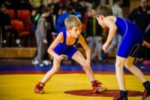 Вольная борьба польза и вред для детей