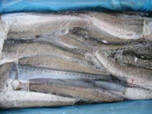 Хоки рыба вред и польза и вред