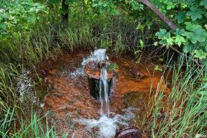 Органическое железо в воде польза и вред