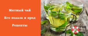 Чай с мятой польза и вред для женщин сердечников