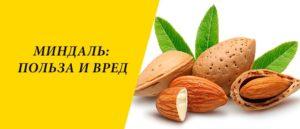 Миндаль орех польза и вред для женщин