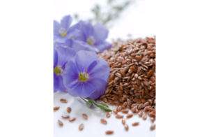 Семя льна натощак утром польза и вред