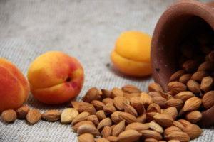 Орехи из абрикосовых косточек польза и вред