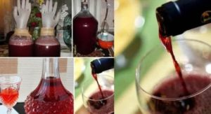 Домашнее вино из изабеллы вред и польза