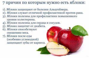 Яблоки польза и вред для организма для женщин