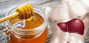 Мед для печени и желчного пузыря польза и вред