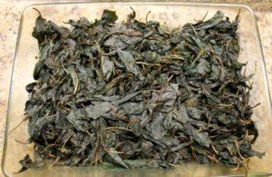 Ферментированный чай из листьев вишни польза и вред