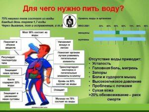 3 литра воды в день польза или вред