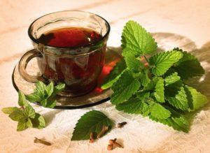 Чай из листьев малины польза и вред для женщин