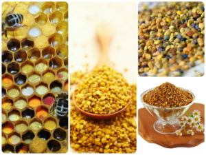 Пчелиная пыльца польза и вред для женщин