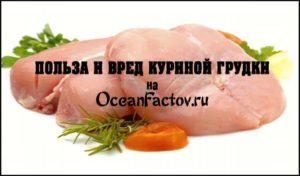 Мясо курицы польза и вред для организма