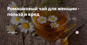 Польза и вред ромашкового чая для женщин