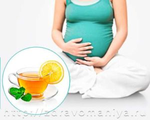 Зеленый чай польза и вред при беременности
