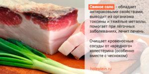 Свиное сало польза и вред для печени