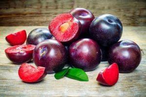 Слива польза и вред для здоровья калорийность